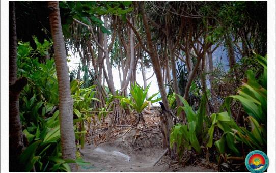 Weg zum Maya Beach