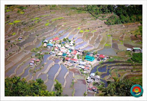 Dorf Batad mitten in den Reisfeldern